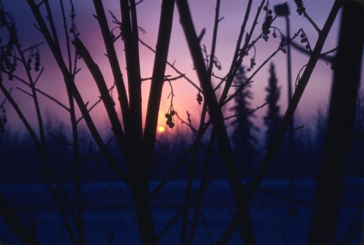 Fairbanks1980